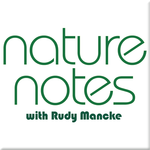 https://mediad.publicbroadcasting.net/p/wltr/files/styles/npr-feeds-podcast-cover-art/public/201410/nature_notes.png